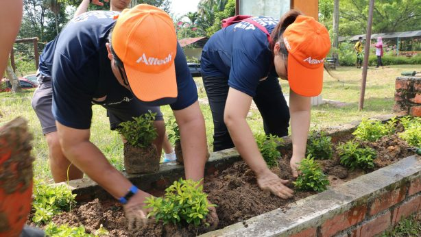 alltech employees planting trees